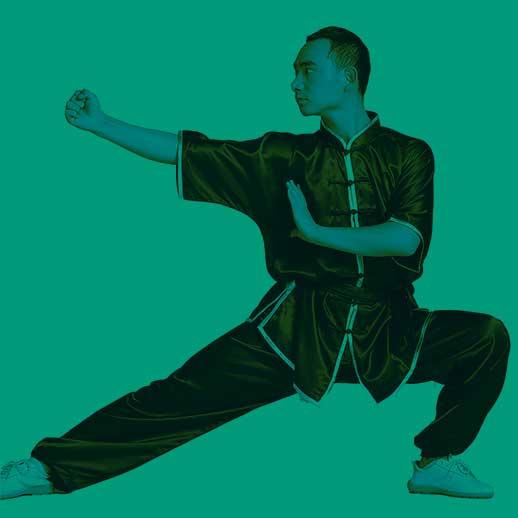 wushu kung fu caluscosport.it nuova denominazione dpcm 13.10.2020